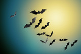 halloween and scary concept - black bats flying in moonlight over night sky background - 221994028