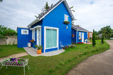 Two styles of blue house decorated with garden front and flower pot. Home style, simple decor. - 221995843
