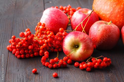 Local farmers seasonal harvest theme, apple, pumpkins and berries on table - 222005836