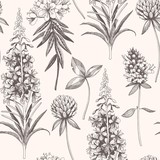 Vector hand drawn meadow flowers seamless pattern - 222029892