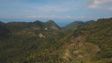 aerial footage grove of palm trees in hills against sky and clouds. Hills covered with green vegetation and coconut palms. Philippines - 222031887