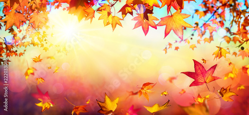 Falling Autumn Red Leaves With Sunlight - Fall Background