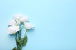 Bouquet of white eustoma flowers on blue background