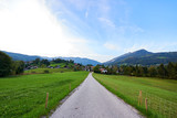 Beautiful mountain valley/field road landscape with forest, traditional austrian village and blue sky in Austrian Alps. Austria, Salzkammergut - 222039035