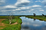 Notec River and rural landscape in summer in Poland. - 222049435