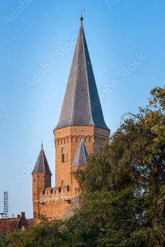 Authentic monumental medieval city gate called 'Drogenapstoren'. Remains of a historic old fortified town in the Netherlands along the river IJssel in the province of Gelderland - 222051228