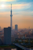 Tokyo, Japan - April 25 2018: Scenic view of the city of tokyo, the capital city of Japan