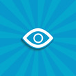 observation icon. eye vector icon