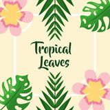 flower ornament palm foliage tropical leaves