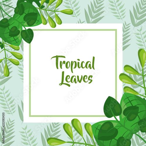 tropikalny liść szablon moda zielony wzór