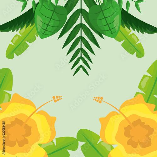 żółte kwiaty i liście tropikalne naturalne