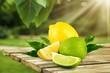 Leinwandbild Motiv collection of fresh limes and lemons - collage