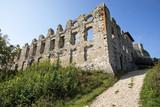 Zamek Rabsztyn – ruiny średniowiecznego zamku leżącego na Jurze Krakowsko-Częstochowskiej, - 222092246