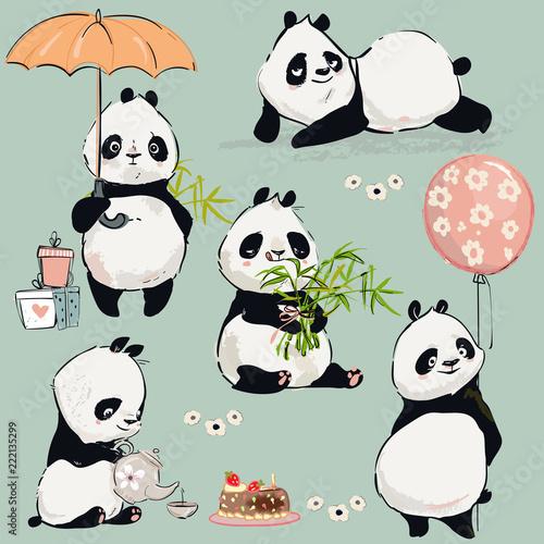 Fototapeta Little panda collection
