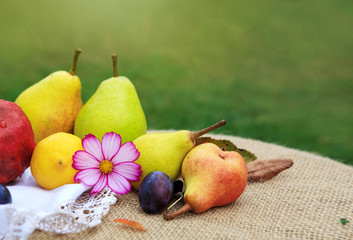 Fresh mixed fruits on brown tablecloth isolated on green background.
