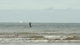 surfeur volant au dessus de l'eau (slow motion) - 222160240