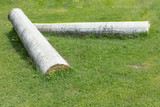 Two column of a historical building lying on the grass - 222160635