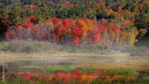 Panoramiczny widok wiejski Vermont w jesień czasie.