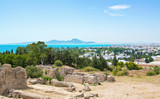 Tunisia landscape view from Byrsa hill on town, sea and mountains - 222177648