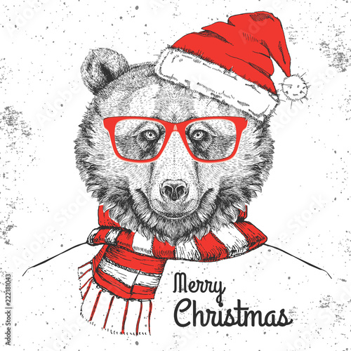 Fototapeta Christmas Hipster fashion animal bear dressed a New Year hat and scarf