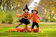 Kids with pumpkins in Halloween costumes - 222197418