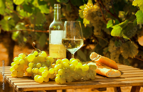 glass of White wine ripe grapes and bread on table in vineyard © caftor