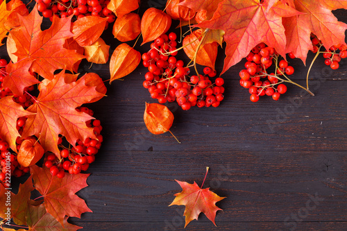 Jesień ramowy skład z spadać liśćmi na drewnianym z kopii przestrzenią dla teksta. Święto Dziękczynienia, Halloween, sezonowe upadek koncepcji płasko świeckich