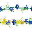 Seamless patterns ornaments of grass spikelets and cornflowers, vector illustration.