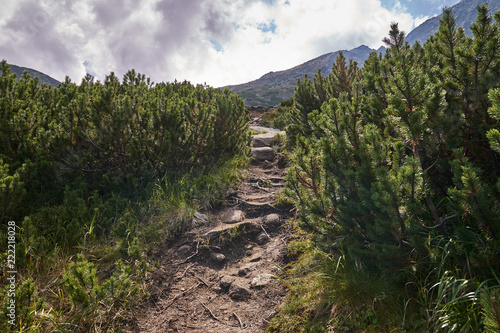 Hiking trail in the mountains - 222218028