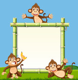 Monkey on the bamboo board - 222241691