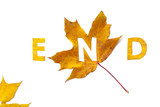 End. Letters carved from wedge leaves - 222242618