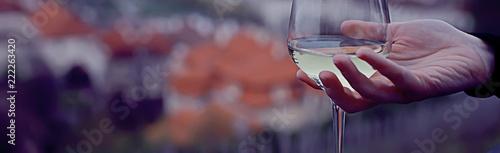 Leinwanddruck Bild top concept alcohol, wine glass / glass of wine narrow long horizontal background, beautiful glass of wine