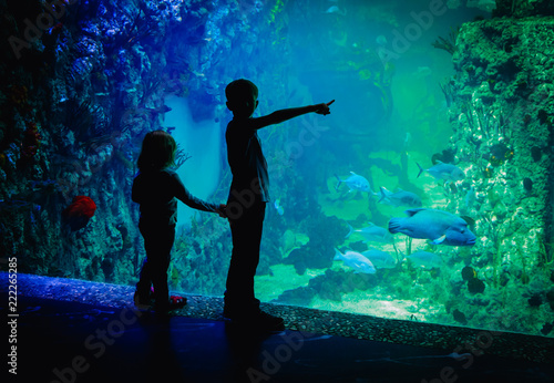 Fridge magnet kids-boy and girl- watching fishes in aquarium