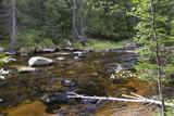 Wild Landscape about Creek Kremelna, Sumava, mountains in south Czech - 222272812