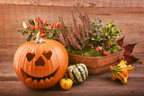 Halloween pumpkin and autumn flowers. Fall decorations, Holiday card. - 222275499