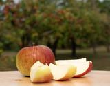 Frische Äpfel - Apfelernte  - 222277860