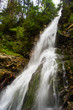 waterfall in forest - 222305645
