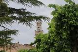 Montepulciano. Regione Toscana. Siena - 222344038