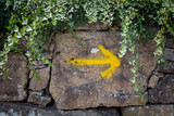 Way of St James, yellow arrow mark on wall for pilgrims to Compostela Cathedral ,Galicia, Spain - 222353656