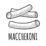 Pasta maccheroni. Vector vintage engraving black illustration