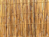 Bamboo background. Japanese Wall.