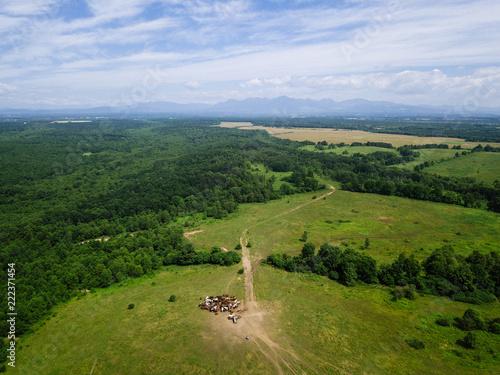 Foto Murales 牧場の空撮