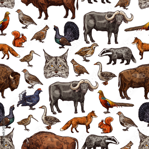 Fridge magnet Wild animals sketch seamless pattern background