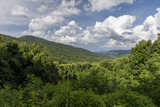 Smoky Mountains Scenic Landscape