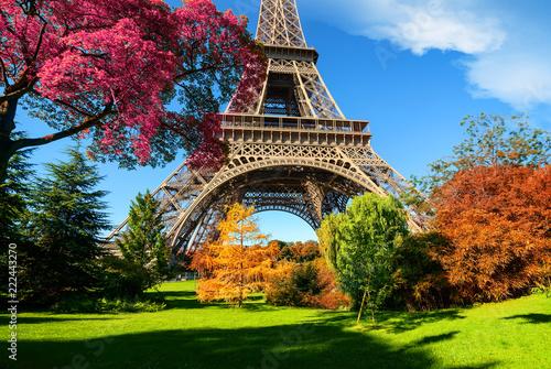 Fridge magnet Trees in park of Paris in autumn