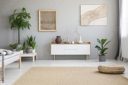 Wicker footrest placed on big carpet on the floor in real photo of light grey living room interior with fresh green plants, two modern posters and white cupboard © Photographee.eu