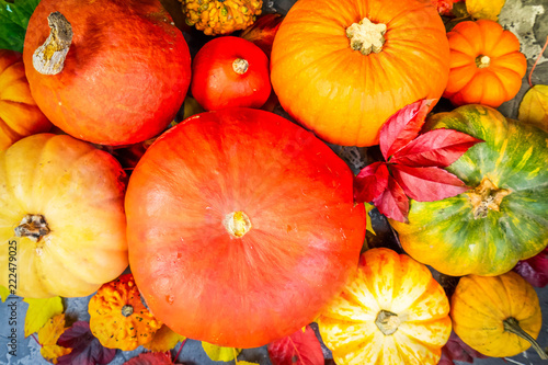 Harvest of raw pumpkins with fall leaves close up, flat lay scene, retro toned - 222479025
