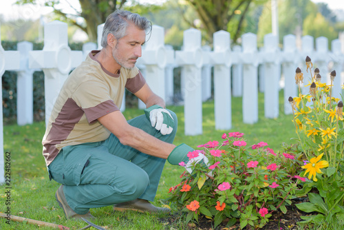 Man tending flowers in cemetery - 222482662