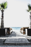 Beach chairs and palm trees on the Mediterranean coast. exotic, calming - 222496059
