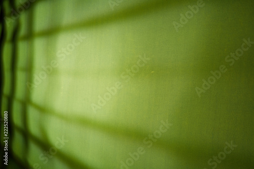 Lime green background with black lines in the form of a lattice - 222520880